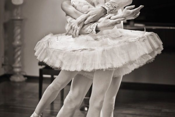 バレエの世界~踊る喜び、見る喜び
